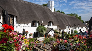 Picture of The Cott Inn in Totnes