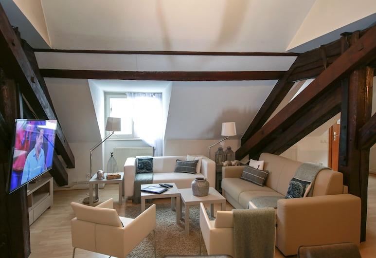 科尔马鲍姆加特纳 117M 公寓, 科尔玛, 公寓, 起居室