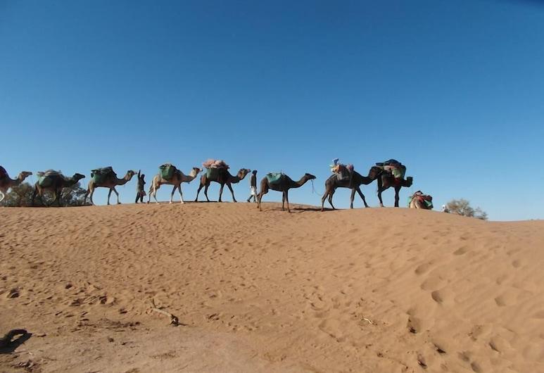 Erg Chegaga Desert Camp, M'Hamid El Ghizlane