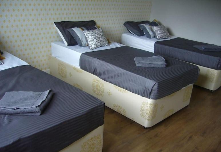 Dragon - Peat Road House 3 Bedroom Home, Glasgow, Căn hộ, 3 phòng ngủ, Phòng