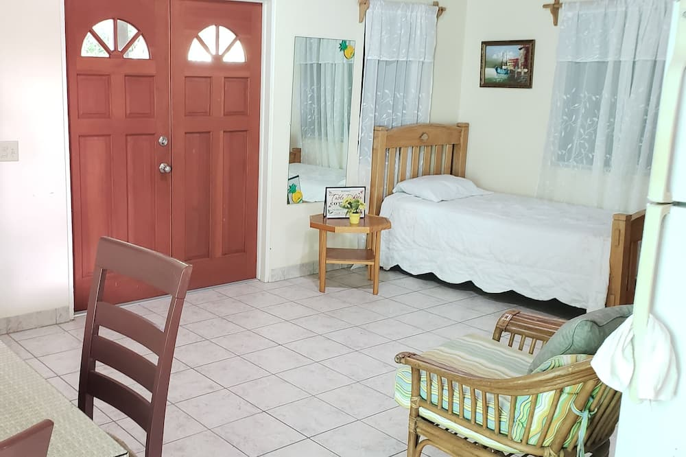 Apartment with Car Rental and Insurance  - Living Area