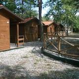 Camping Aviglianalacs