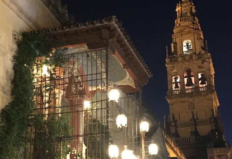 Apartaluz Córdoba Centro Ciudad, Córdoba, Design Apartment, 1 Bedroom, Balcony (Arqueológico), Pemandangan Bandar