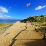 Vaade rannale/ookeanile