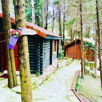 Foto del Agva Orman Evleri (Forest Lodge) en Sile