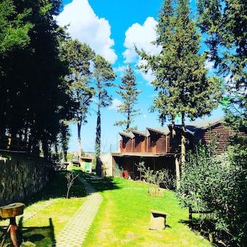 Fotografia do Agva Orman Evleri Forest Lodge em Sile