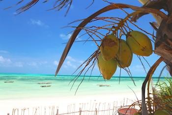 Foto av Mango Beach house i Jambiani