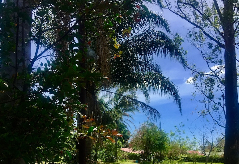 Campamento & Hostel Cafeaventura , Sabanilla, Jardim