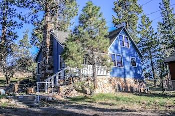 Bild vom Sweet Blue Spruce in Big Bear