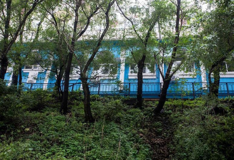 Tiger Hostel, Vladivostok, Hotel Front