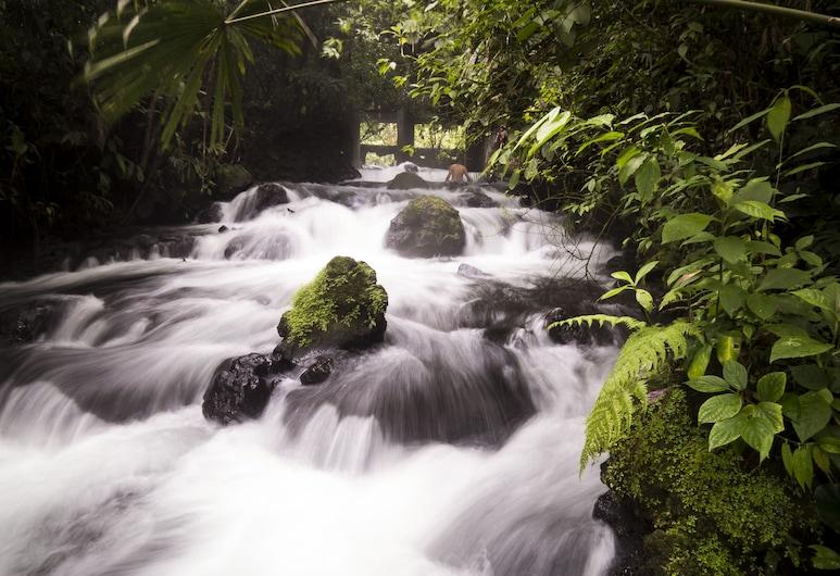 Cabañas del Rio, La Fortuna, Ulkoalueet