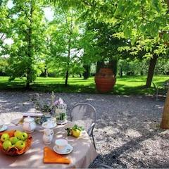 BBQ/piknik-terület