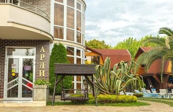 Picture of Arli Hotel in Sochi