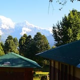 Deluxe Double or Twin Room - Mountain View