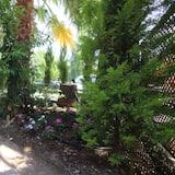 חדר לשלושה - נוף לגן