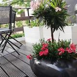 Estudio (Terrasse) - Terraza o patio