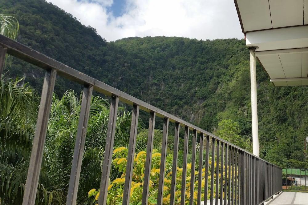 Standarta divvietīgs numurs, 1 divguļamā gulta, ledusskapis - Skats no balkona