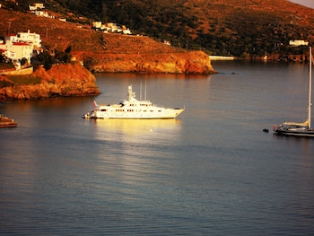 Picture of Blue Dolphin in Andros