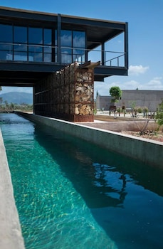 Image de Agua de Vid Vallée de Guadalupe
