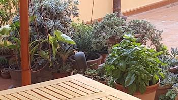 Picture of Five Roses Bed & Breakfast in Pisa
