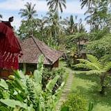 Bali Mountain Retreat