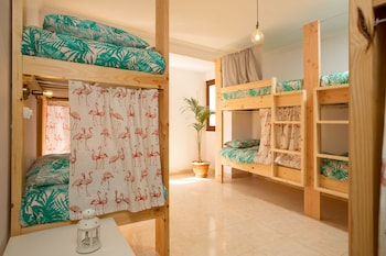 Foto di Avocado Surf Hostel a Las Palmas de Gran Canaria