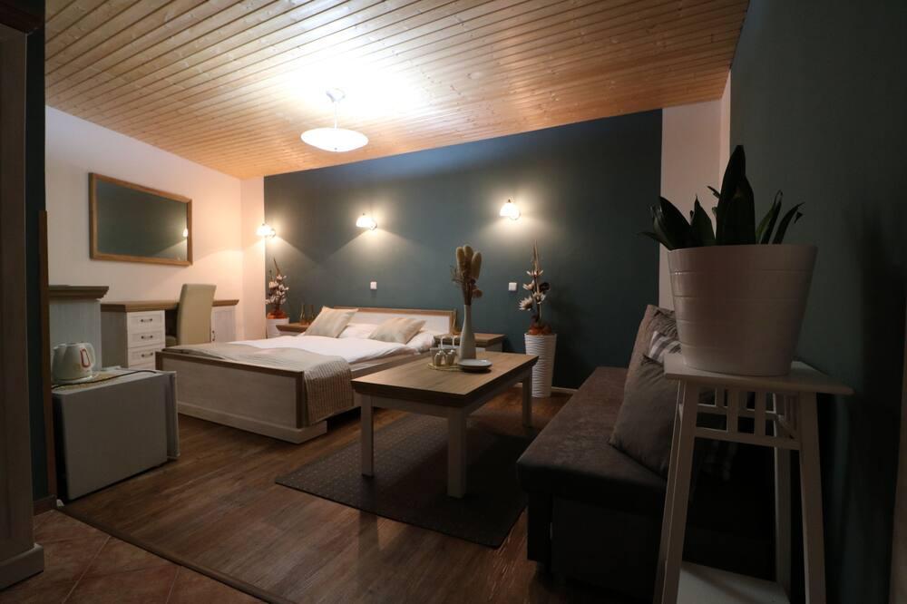 Išskirtinio dizaino kambarys (1 dvigulė / 2 viengulės lovos) - Svečių kambarys