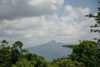 Picture of Kandyan Glory in Kandy