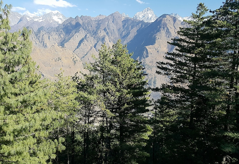 Mount View Annexy, Joshimath, Property Grounds