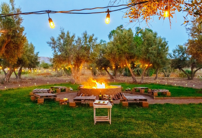 Guadalupe Valle Glamping, Valle de Guadalupe, Property Grounds