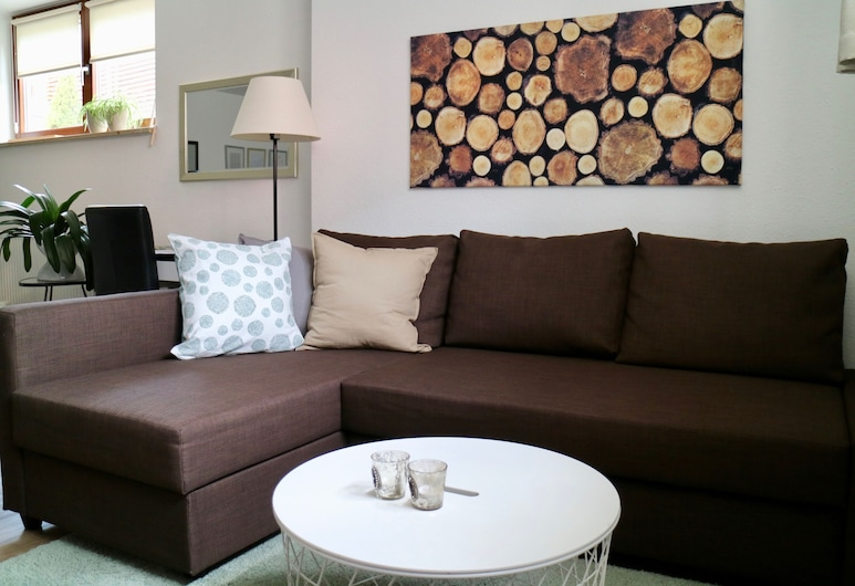 Large 1 Room Apartment With Bathroom and Kitchen, لويراخ, غرفة معيشة