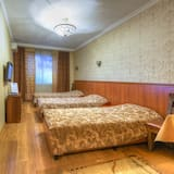 Chambre Triple Exécutive, 1 chambre, non-fumeurs, vue ville - Salle de séjour