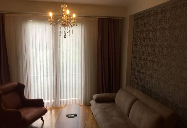 Omar Sultan Taksim, Stambulas, Liukso klasės kambarys (1 dvigulė / 2 viengulės lovos), 2 miegamieji, vaizdas į miestą, Svetainės zona