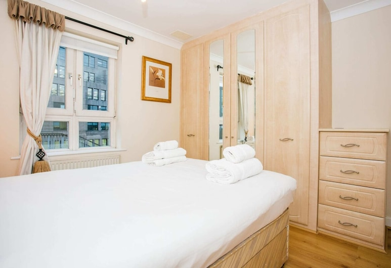 1 Bedroom Apartment Near St Pauls, Londýn