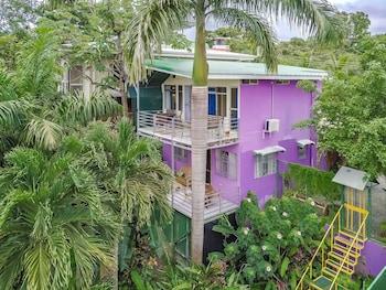 Picture of Peace of Paradise in Manuel Antonio