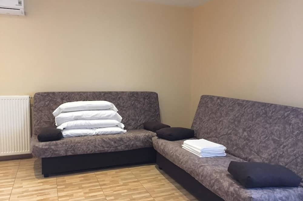 アパートメント 1 ベッドルーム - リビング ルーム