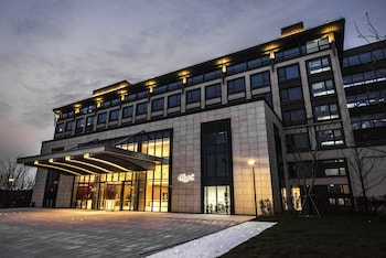 在上海的上海三甲港绿地铂派酒店照片