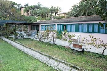 Monterosso al Mare bölgesindeki Girasole Dell'Orefice resmi