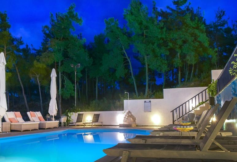 Ξενοδοχείο Λέανδρος, Αριστοτέλης, Εξωτερική πισίνα