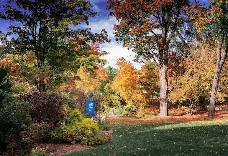 The Blue Horse Inn, Woodstock, Garden