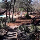 家庭小屋 - 園景