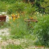 Divvietīgs numurs, skats uz dārzu - Skats uz dārzu