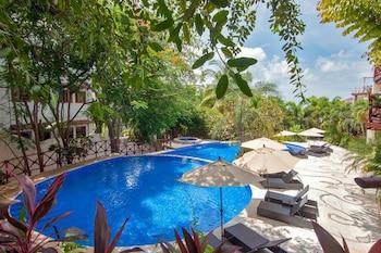 Fotografia hotela (Pajaro de Fuego, Chelsea's Luxury Units) v meste Sayulita