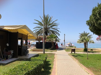 Picture of Arsi Enfi City Beach Hotel in Alanya