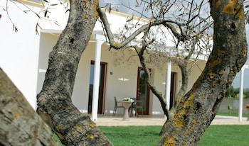 Fotografia do La Palazzina Bed & Breakfast em Porto Cesareo