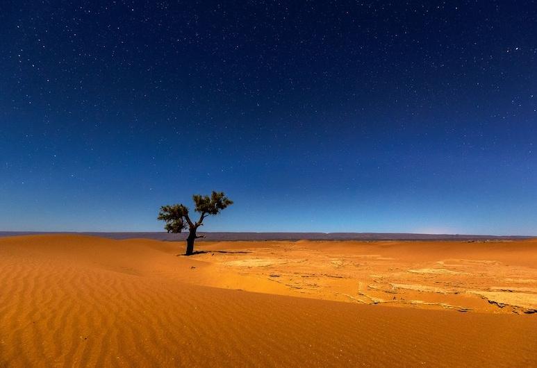 Camp Sahara Nights, М'Хамид-Эль-Гизлан, Вид снаружи / фасад