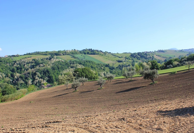 Agriturismo La Vecchia Fonte, Castelbellino, Property Grounds