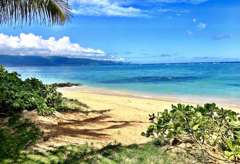 Hide Away Beach Front Luxury Retreat, Pool, Kite, Windsurf, Sup, Large Yard, Kahului, Beach