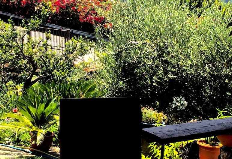 Pozzo Medievale, Prignano Cilento, Garden