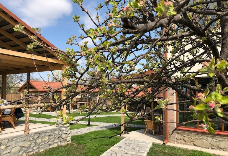 Hotel & Wine Cellar ARGE, Telavi, Jardín
